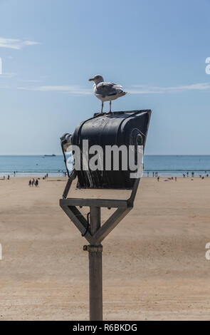 Seagull on a projector at the beach of Les Sables d'Olonne (Vendee, France) - Stock Photo