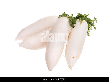 Daikon radishes isolated on white background - Stock Photo
