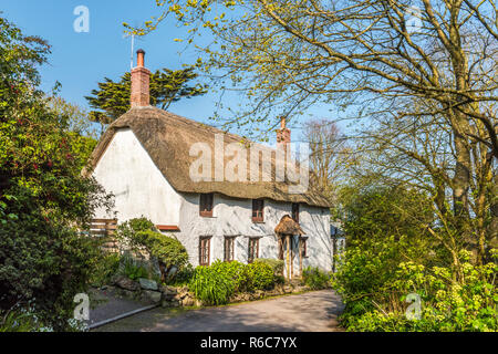 A picturesque thatched cottage on a quiet lane in Church Cove, on the Lizard Peninsula near Lizard village, Cornwall, England - Stock Photo