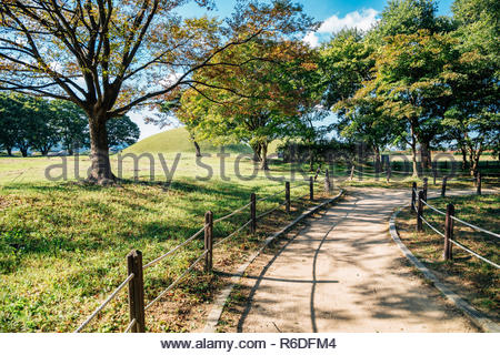 Green forest road at Gyeongju Gyerim in Gyeongju, Korea - Stock Photo