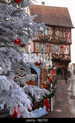 The Christmas tree in front of traditional half-timbered Alsatian house, Colmar, France. - Stock Photo