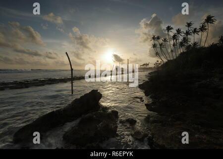 the stilt fishermen in the sunset at koggala in sri lanka - Stock Photo
