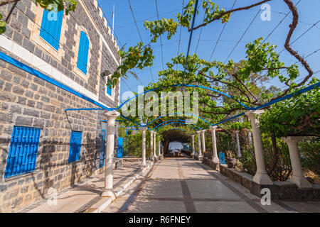 The Vine Garden Patio At The Greek Orthodox Church Of The Seven Apostles Near Capernaum, Israel, Holy And, Middle East - Stock Photo
