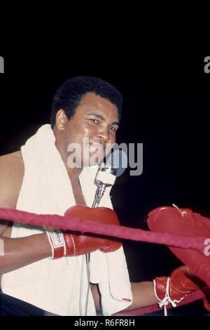 Boxer, Muhammad Ali NO MR - Stock Photo