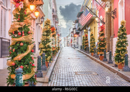 San Juan, Puerto RIco Christmas tree lined road in the old town.l - Stock Photo