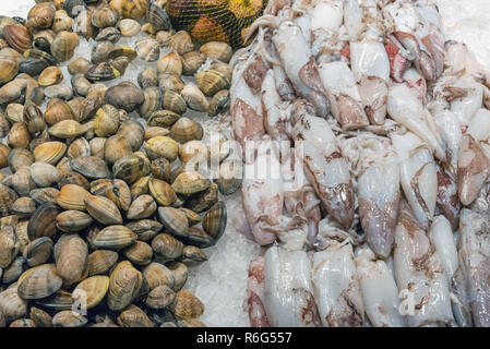 cuttlefish and clams on a market in madrid,spain - Stock Photo