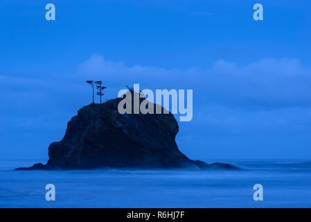 Blue hour at Second Beach, Olympic National Park, Washington. - Stock Photo