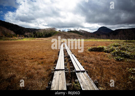 Mother and son walking on wooden pathway from marsh swamp to forest. Autumn season, Japan, Nagano. - Stock Photo