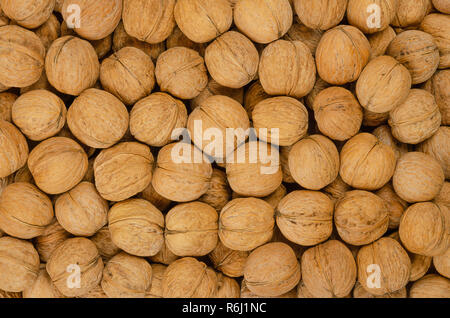 Walnuts background. Unshelled dried seeds of the common walnut tree Juglans regia. Pile of whole nuts with shells, used as snack and for baking. - Stock Photo