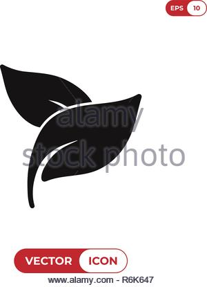 Herbal spa treatment leaves vector icon - Stock Photo