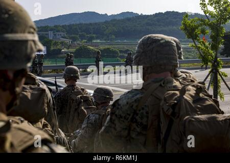 U.S. Marines and Sailors with India Company, 3rd battalion, 8th Marines, forward deployed to the 3rd Marine Division, as part of the forward Unit Deployment Program, observe Republic of Korea Marines hiking on Camp Mujuk, South Korea. May 29, 2017. This is the first time that most of the marines have ever seen Republic of Korea Marines. - Stock Photo