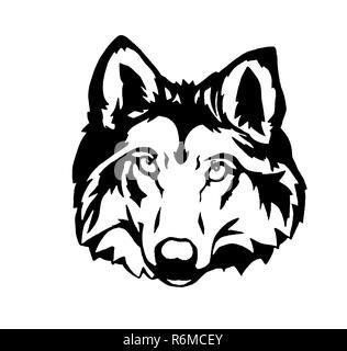wolf illustration wildlife head - Stock Photo