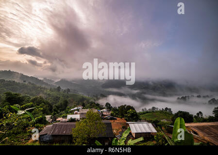 Beautiful morning panorama of forest covered by low clouds. Colored sunrise in forested mountain slope. - Stock Photo