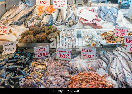 Frische Meeresfrüchte und Fisch zum Verkauf auf einem Markt in Santiago de Chile - Stock Photo