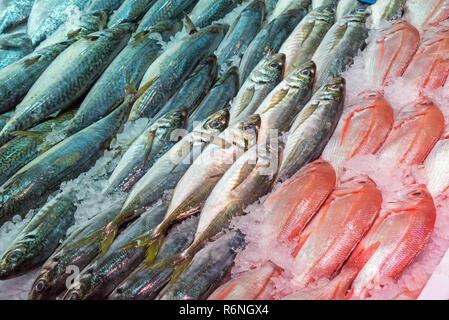 Frischer Fisch zum Verkauf auf einem Markt in Madrid, Spanien - Stock Photo