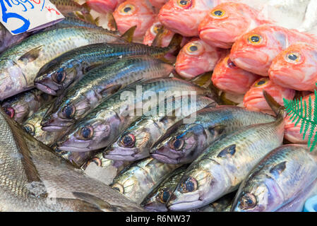 Frischer Fisch zum Verkauf auf einem Markt in Madrid - Stock Photo