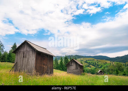 Wooden cottages in a line on a blooming meadow - Stock Photo