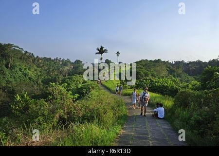 path walk in Ubud - Stock Photo