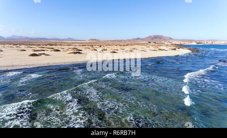 Aerial view of sea waves crushing white sand beach by dunes and volcanic mountains, on a sunny summer day in Fuerteventura, Canary Islands . - Stock Photo