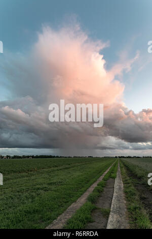Isolated storm over the dutch countryside at sunset. The sun casts his last colorful light on this Cumulonimbus cloud. Occasionaly thunder was heard. - Stock Photo