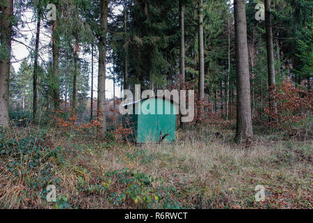 Trailer for lumberjacks stands in the forest - Stock Photo