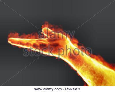 VP 6229663, BUNDESREPUBLIK DEUTSCHLAND, BAYERN, 06.06.2010,   An image of a nice male palm on fire   [Copyright notice: Markus Gann/McPHOTO/vario imag - Stock Photo