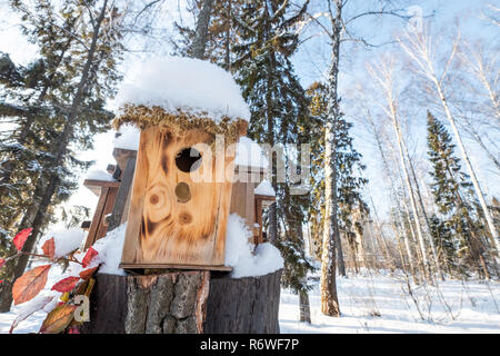 Many birdhouses, for birds and feeders on the tree. Houses for birds in the winter under the snow on the tree. Bird protection in the park with birds nesting-boxes collection. - Stock Photo