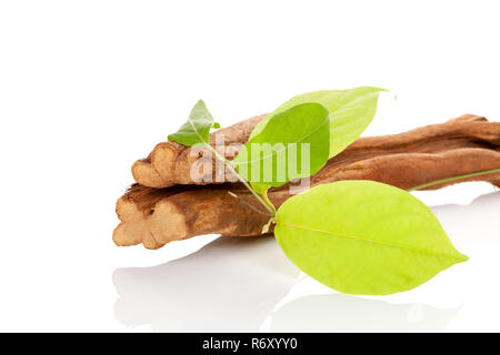 Banisteriopsis caapi wood and leaves. - Stock Photo