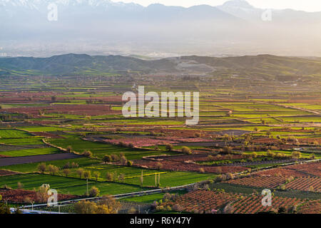 Beutiful sunset over colored agricultiral fields - Stock Photo