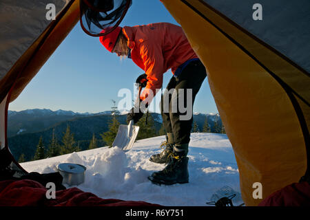WA15442-00...WASHINGTON - Digging snow to melt for breakfast at winter camp on Suntop Mountain in Mount Baker-Snoqualmie National Forest. - Stock Photo