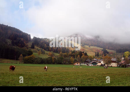 bernau in the southern black forest - Stock Photo