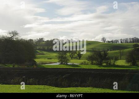Lush Green Rolling Hills with Woodland and Powderham Folly Tower. Devon Farming Landscape, Powderham, Exeter, UK. - Stock Photo