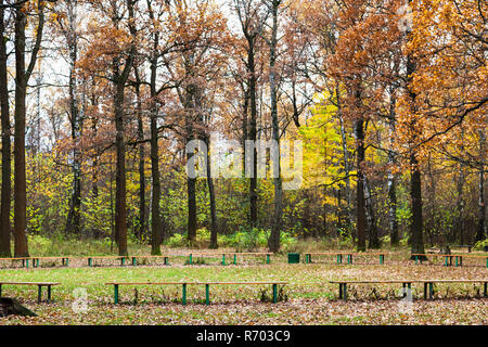 benches on meadow in urban park in autumn - Stock Photo