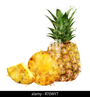 Pineapple on white background. Watercolor illustration - Stock Photo