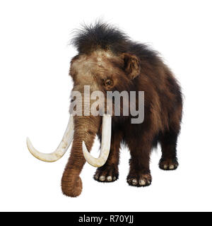 3D Rendering Woolly Mammoth on White - Stock Photo