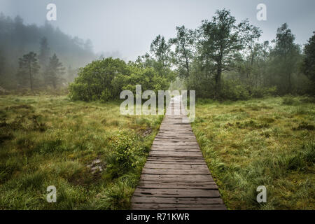 Swamp wooden path walkway to Trolltunga, Norway - Stock Photo