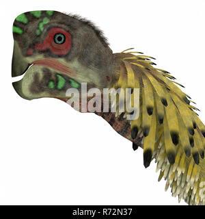 Citipati Dinosaur Head - Stock Photo