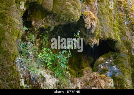 Small waterfall in France's Vercors national park. The water of the mountains gathered in the 'gorges d' ombleze 'to get up to different places in the - Stock Photo