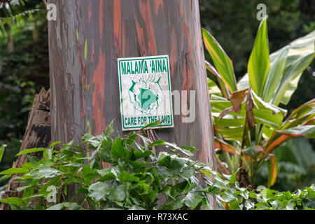 A sign on a rainbow eucalyptus tree in the Waipi'o Valley on the Big Island of Hawaii urges people to 'care for the land.' - Stock Photo