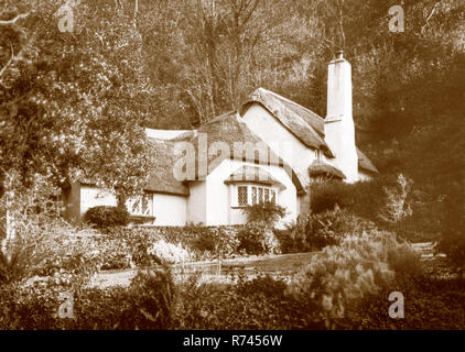 A sepia toned photograph taken on a paper negative in a 7 x 5 inch plate camera in October 2018 of a thatched cottage on Selworthy Green on Exmoor, So - Stock Photo