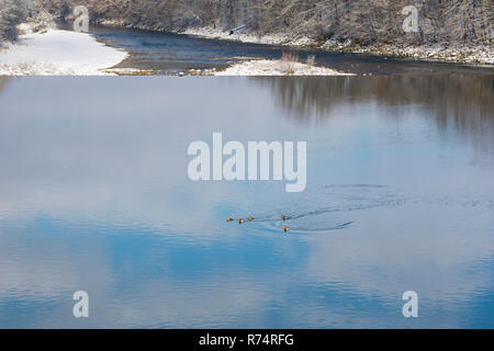 View of a Lake and Clouds reflected in the water on a cold Winter Day. - Stock Photo