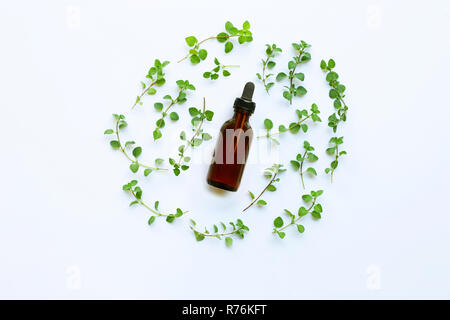 Top view. Bottle of essential oil with oregano on white background. - Stock Photo