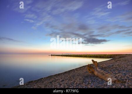 Seascape, snag on the seashore, in the background breakwater, Black Sea, Small Bay, Anapa, Russia - Stock Photo