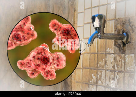 Tap water contaminated with the brain-eating amoeba Naegleria fowleri,computer illustration and photo.This organism is an opportunistic pathogen of humans,causing meningoencephalitis (inflammation of the brain and its surrounding membranes) when inhaled,often by children swimming in fresh water.Another way of transmission is ritual nasal rinsing present in different cultures,in case of tap water contaminated with Naegleria.Headaches,vomiting,sensory disturbance and a fatal coma may occur if the victim is not treated.Treatment is with antiprotozoal drugs. - Stock Photo