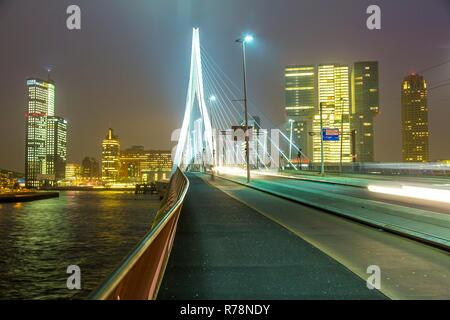 Skyline on the Nieuwe Maas river, Erasmus Bridge and skyscrapers in the Kop van Zuid quarter, Rotterdam, Holland