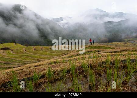 Mother and son walking at Maruyama Senmaida rice terraces in central Japan, Maruyama-senmaida, Kumano, Japan - Stock Photo