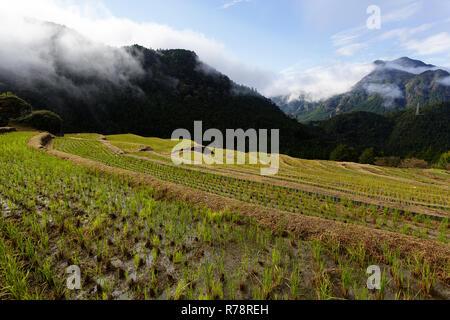 Maruyama Senmaida rice terraces in central Japan, Maruyama-senmaida, Kumano, Japan - Stock Photo