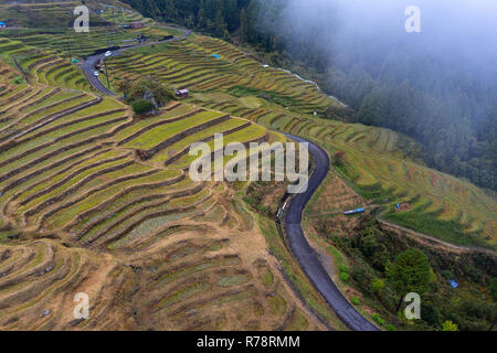 Aerial view of Maruyama Senmaida rice terraces in central Japan, Maruyama-senmaida, Kumano, Japan, taken by drone - Stock Photo