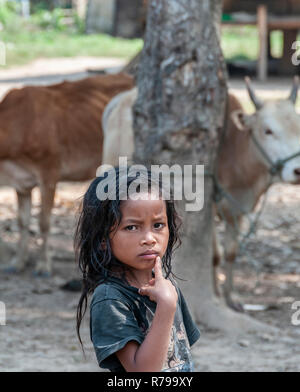 Curious young girl  from a Hmong rural village with cows in the background  living along The Mekong River Northern Laos, Lao, Southeast Asia - Stock Photo