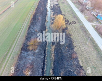 Irrigation canal with burned reeds along the shore. Ashes from the grass. - Stock Photo